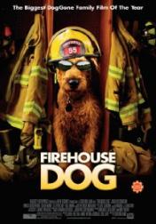 Firehouse Dog 2007