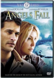 Angels Fall 2007