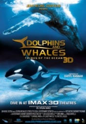 Dolphins and Whales 3D: Tribes of the Ocean 2008