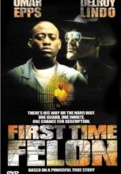 First Time Felon 1997