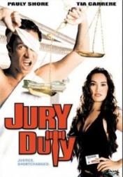 Jury Duty 1995