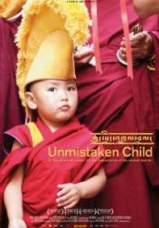Unmistaken Child 2008