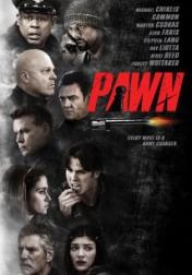 Pawn 2013