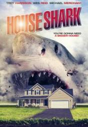 House Shark 2017