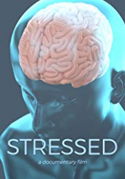 Stressed 2019