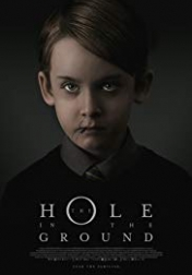 The Hole in the Ground 2019