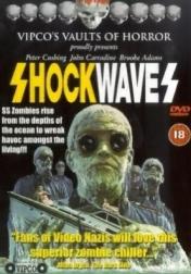 Shock Waves 1977
