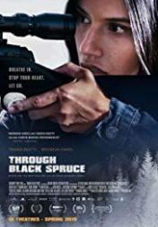 Through Black Spruce 2018