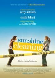 Sunshine Cleaning 2008