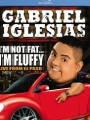 Gabriel Iglesias: I'm Not Fat... I'm Fluffy 2009