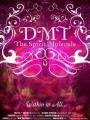 DMT: The Spirit Molecule 2010