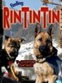Finding Rin Tin Tin 2007
