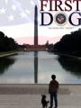 First Dog 2010