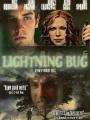 Lightning Bug 2004