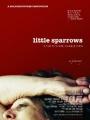 Little Sparrows 2010
