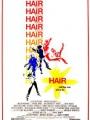 Hair 1979