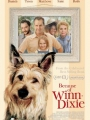 Because of Winn-Dixie 2005