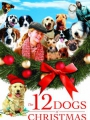 The 12 Dogs of Christmas 2005