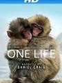One Life 2011