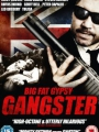 Big Fat Gypsy Gangster 2011