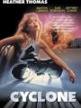 Cyclone 1987
