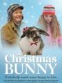 The Christmas Bunny 2010