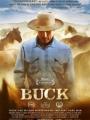 Buck 2011