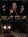 Night Drive 2010