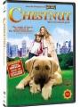 Chestnut: Hero of Central Park 2004