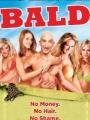Bald 2008