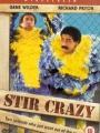 Stir Crazy 1980