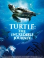 Turtle: The Incredible Journey 2009