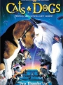 Cats & Dogs 2001