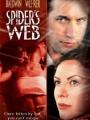 Spider's Web 2002
