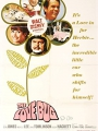 The Love Bug 1968
