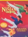 3 Ninjas Kick Back 1994