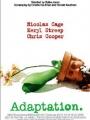 Adaptation. 2002