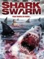 Shark Swarm 2008