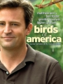 Birds of America 2008