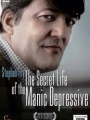 Stephen Fry: The Secret Life of the Manic Depressive 2006