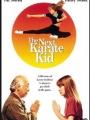 The Next Karate Kid 1994