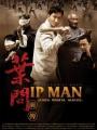 The Legend Is Born: Ip Man 2010