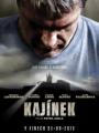 Kajinek 2010