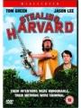 Stealing Harvard 2002