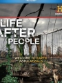 Life After People 2008