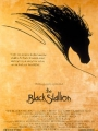 The Black Stallion 1979