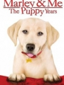 Marley & Me: The Puppy Years 2011