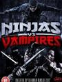Ninjas vs. Vampires 2010