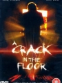 A Crack in the Floor 2001