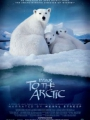 To the Arctic 3D 2012